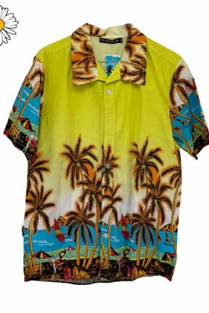 Lote de camisas hawaianas